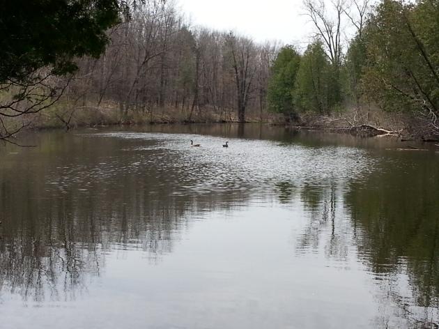 Flint River, Windrise Retreat Center